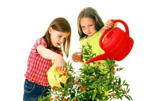 responsabilizzare i bambini