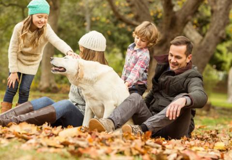 cani-per-bambini2